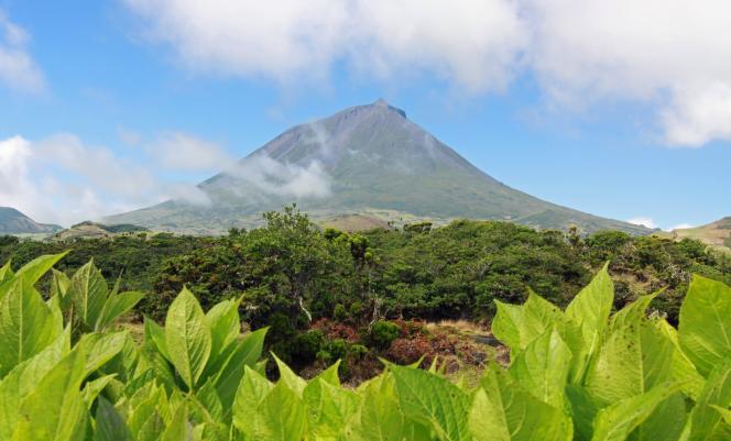 Ponta do Pico