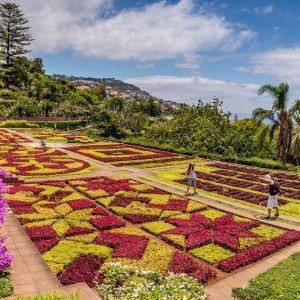 Funchal Madeira Tuinen