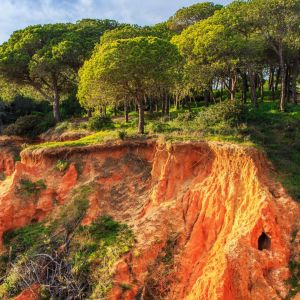 Rondreis Lissabon naar de Algarve via Alentejo kust 12