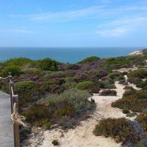 Rondreis Lissabon naar de Algarve via Alentejo kust 42