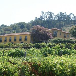 Solares Wijnroute Rondreis 13