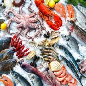 Vis en zeevruchten Ericeira Portugal