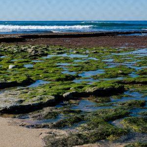Ericeira World Surf Reserve