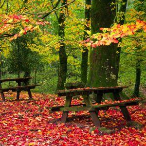 Geres Portugal herfst